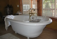 How to Fix a Clogged Bathtub in London Image