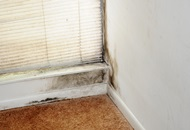 Why Are Leaky Pipes Dangerous in London? image