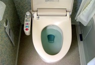Is It Safe to Use Blue Toilet Blocks? image